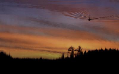 Sky Floater