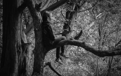 Resting on Branch